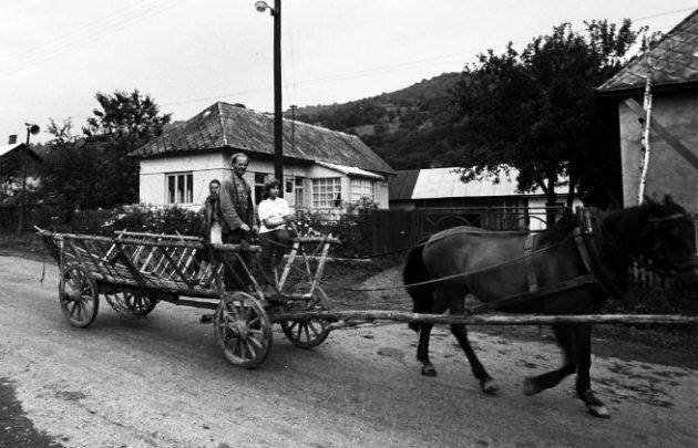 Čiernobiela fotografia dreveného rebriniaka v obci Veľká Poľana rok 1973